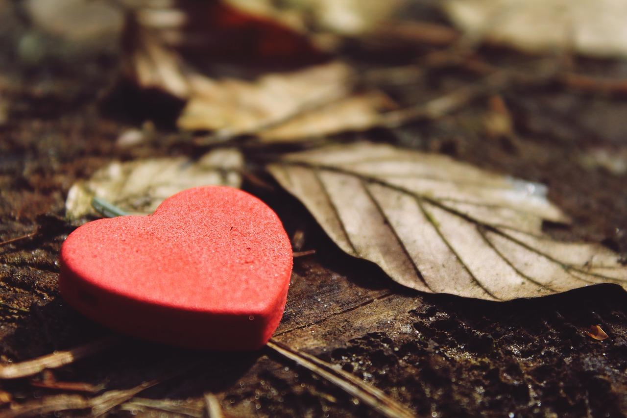 heart-1318850_1280